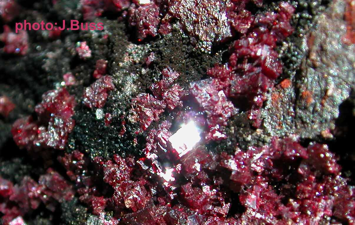 Cuprite 3275 photo:J.Buss
